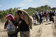 Gevgelija, Macedonia - Refugees and migrants on their way to Gevgelijas train station, minutes after they have crossed the Greek - Macedonian border, on the 23rd of August 2015. Thousands of refugees (mostly coming from Syria) and immigrants try every day to cross the Greek border to Macedonia (Fyrom), hoping to continue their journey to Central/North Europe and eventualy reach countries like Germany, Great Britain and Sweden.