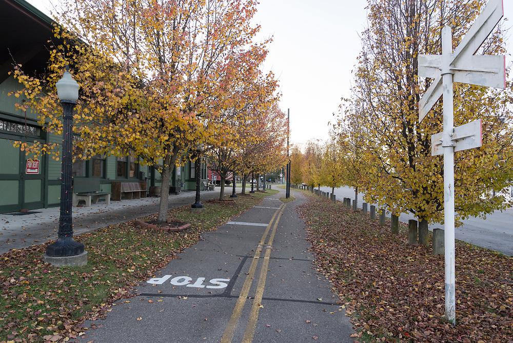 A late November Sunday walk in Ohio.