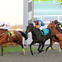 Kempton 19th March