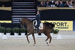 Mohimont Dominique, BEL, Zephyr<br /> CDI4* Grand Prix<br /> Vlaanderens Kerstjumping Memorial Eric Wauters<br /> © Dirk Caremans<br /> 27/12/2016er