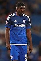 Cardiff City's Bruno Ecuele Manga
