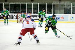 Sebastan Hadzic of Olimpija during ice-hockey match between HDD Tilia Olimpija and EC Red Bull Salzburg in EBEL league, on January 10, 2016 at Hala Tivoli, Ljubljana, Slovenia. Photo by Morgan Kristan / Sportida