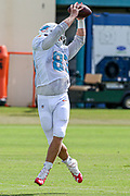 Miami Dolphins tight end Nick O'Leary (83) catches a pass during Minicamp at the Baptist Health Training Facility at Nova Southeastern University, Tuesday, August 6, 2019, in Davie, Fla. (Kim Hukari/Image of Sport)