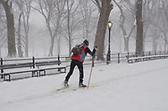 A skiier on The Mall a in Central Park after a snow storm.