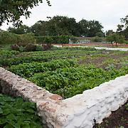 Vegetable Garden looking west