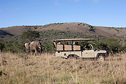 April 2009 Addo Elephant Back Safaris, Addo, Eastern Cape, South Africa
