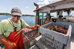 Captain Steve Rosen, and Stern Woman Kachina Watt unload lobsters aboard 'Star Fisher' at the Vinalhaven Fishermen's Co-op in Vinalhaven, Maine.
