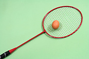 badminton racket with brown egg