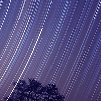 Star trails with the dark night sky in the Kalahari National Park, South Africa.