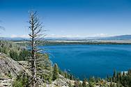 Scenery in Grand Teton National Park.