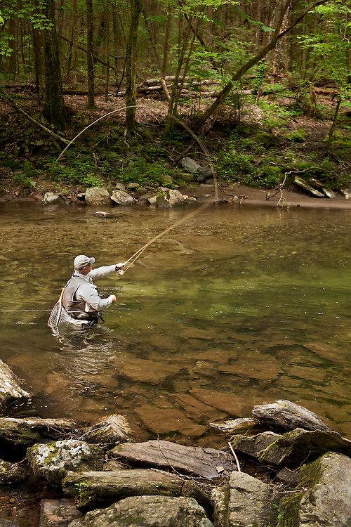 Trout Fisherman on the Little Pigeon River, Great Smoky Mountains National Park, Tennessee