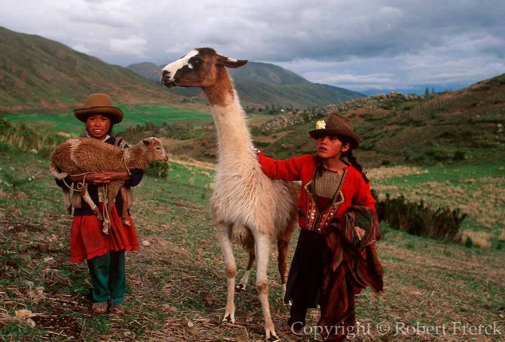 PERU, HIGHLANDS, ANDES MOUNTAINS two young Quechua girls herding a llama  and sheep to their village near Cuzco