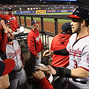 NEW YORK, NEW YORK - May 18:  Daniel Murphy #20 of the Washington Nationals congratulates Bryce Harper #34 of the Washington Nationals on scoring a run as he returns to the dugout during the Washington Nationals Vs New York Mets regular season MLB game at Citi Field on May 18 2016 in New York City. (Photo by Tim Clayton/Corbis via Getty Images)