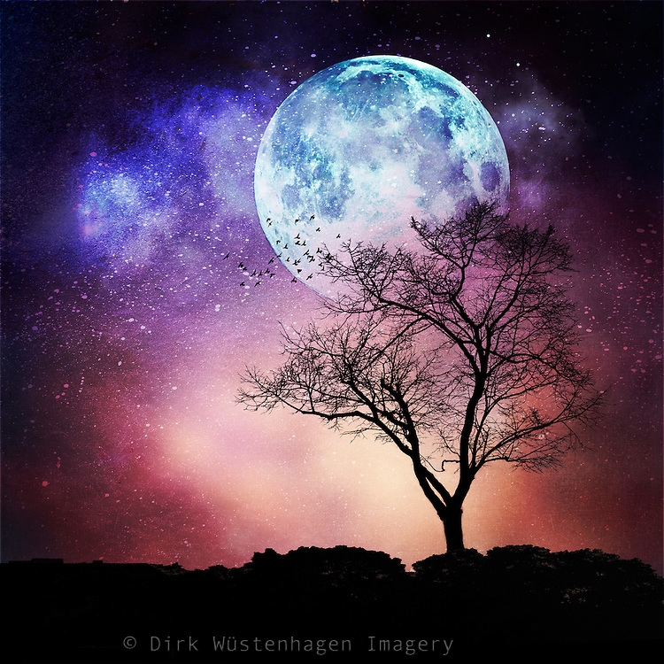 Dreamy nightscape with full moon and a lone tree<br />