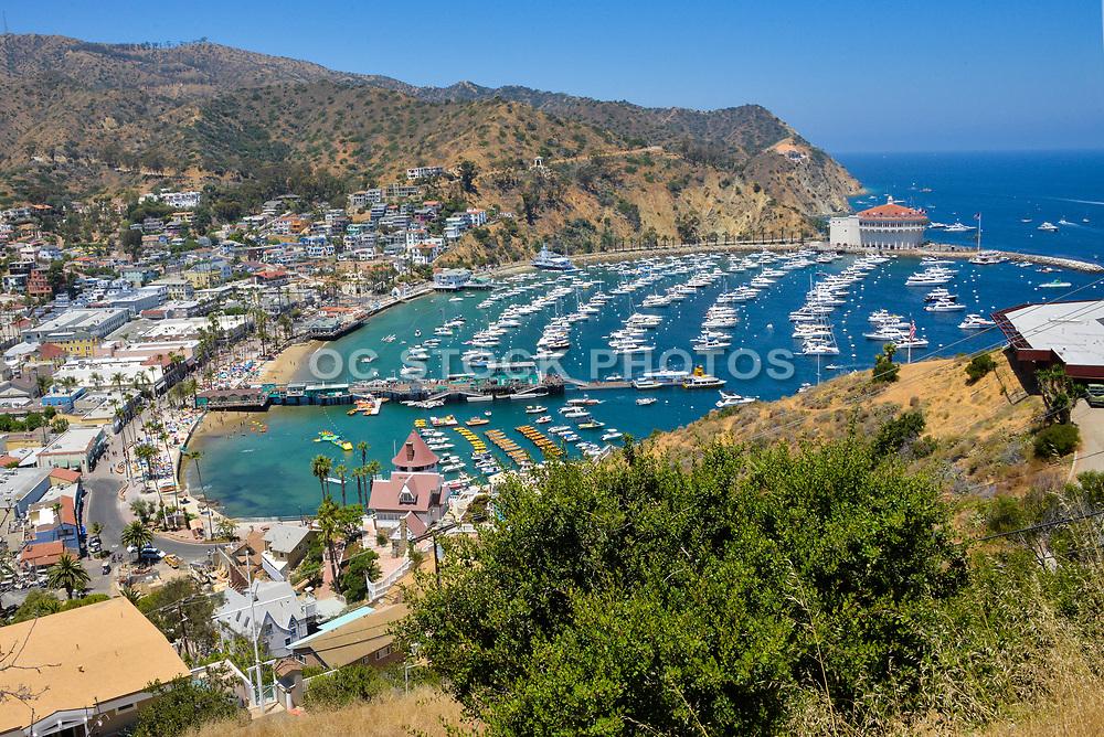 Downtown Avalon Bay Catalina Island