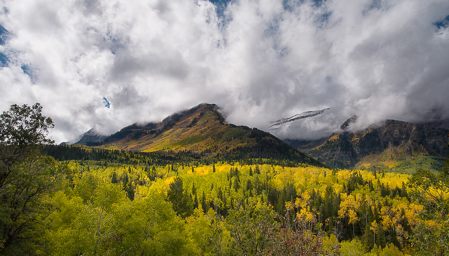 Alpine Loop Scenic drive, American Fork Canyon