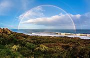 Winkipop Rainbow<br /> Steve Ryan Photography