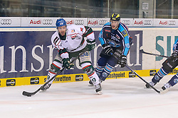 30.12.2013, Saturn-Arena, Ingolstadt, GER, DEL, ERC Ingolstadt vs Augsburger Panther, 33. Runde, im Bild l-r: im Zweikampf, Aktion, mit Stephen WERNER #19 (Augsburger Panther), Benedikt Schopper #10 (ERC Ingolstadt) // during germans DEL Icehockey League 33th round match between ERC Ingolstadt and Augsburger Panther at the Saturn-Arena in Ingolstadt, Germany on 2013/12/30. EXPA Pictures © 2014, PhotoCredit: EXPA/ Eibner-Pressefoto/ Kolbert<br /> <br /> *****ATTENTION - OUT of GER*****
