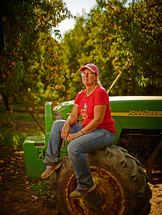 Peach farmer sitting on a John Deere tractor's front tire in the peach orchard. shot as a Environmental Portraiture in California on a PhaseOne IQ180