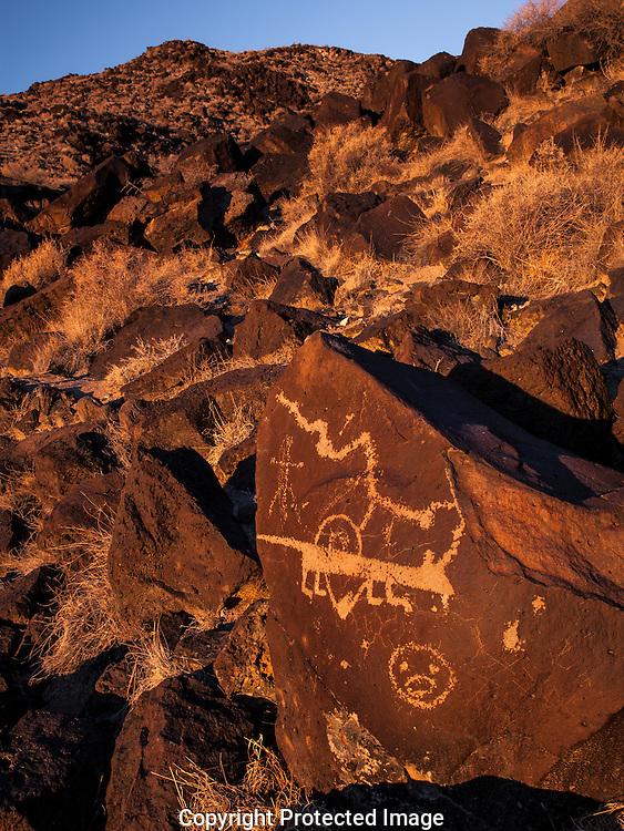 Mountain lion glyph, Petroglyph Nat Mon, NM