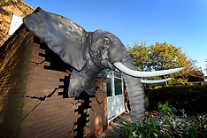 Biggest ever elephant sculpture created by 3D printing machine to break world record - 22 Oct 2018