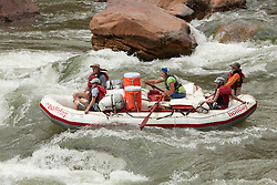 North America, United States, Colorado, Dinosaur National Monument, Green River (Gates of Lodore section), whitewater raft rowing through rapids.  MR