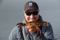 SV Maple Leaf First Mate Brandon Harvey shows off Red Rock Crab (Cancer productus), Gulf Islands, British Columbia, Canada