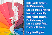 Quote:  Hold fast to dreams, For if dreams die, Life is a broken-winged bird that cannot fly, Hold fast to dreams, For if dreams go, Life is a barren field, Frozen with snow.  By Langston Hughes.  Meme.