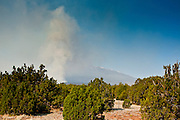 22 JUNE 2010 - FLAGSTAFF, AZ: Smoke rises from the Schultz Fire near the San Francisco peaks, which still have snow on them on the line at the Schultz Fire burning north of Flagstaff, AZ. The fire has consumed more than 12,000 acres of forest land and burned within a few feet of homes in some neighborhoods in Flagstaff.    PHOTO BY JACK KURTZ