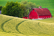 Red Barn in the Palouse, Washington.