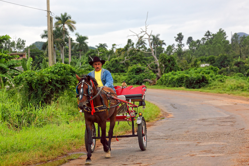 Horse and cart in La Palma, Pinar del Rio, Cuba.