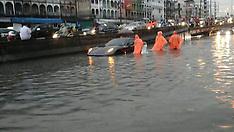 Bangkok: Ferrari sits in Flood water, 3 October 2016