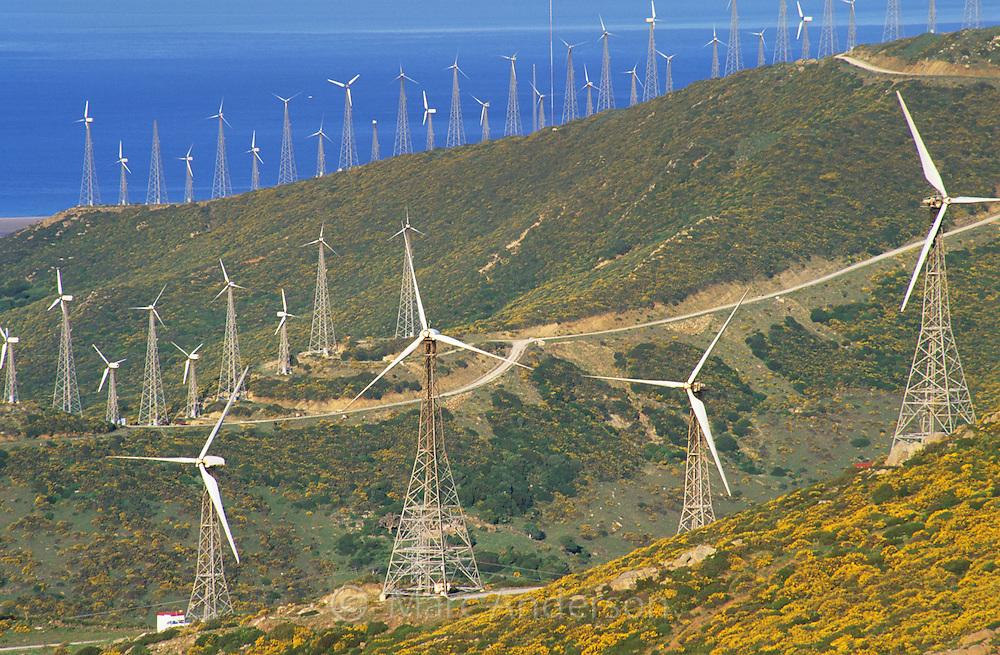 Windmills in a wind farm, Tarifa, Spain