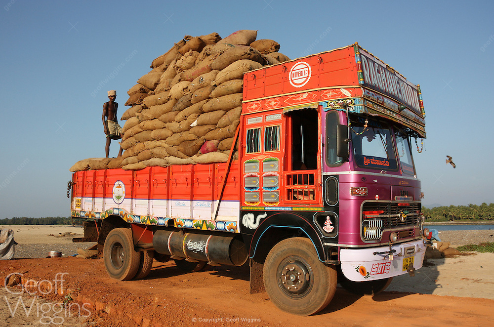 Indian Tata truck being loaded with dried fish, Kasarkod, Karnartaka, India