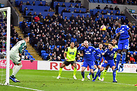 Football - 2018 / 2019 Premier League - Cardiff City vs. Huddersfield Town<br /> <br /> Sol BambaCardiff City leaps to clear , at the Cardiff City Stadium.<br /> <br /> COLORSPORT/WINSTON BYNORTH