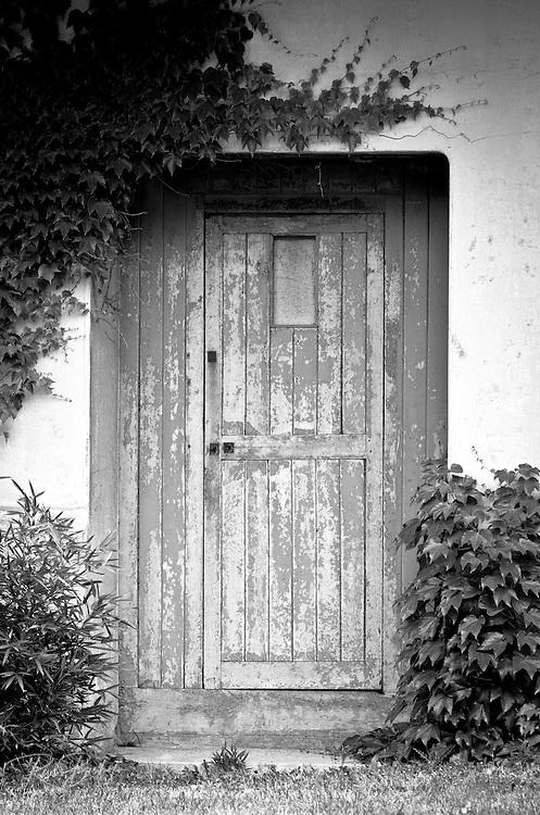 Door and ivy at Parc de la Tete d'Or, Lyon, France (UNESCO World Heritage Site)