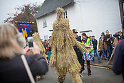 UNITED KINGDOM, Whittlesey: Straw Bear Festival. 'The Bear', traditionally a mischievous straw character, is paraded through the streets of Whittlesey during the Straw Bear festival this weekend. The three day festival, which originated in 1882, consists of traditional Molly, Morris, Clog and Sword dancing as well as parading a large straw character known as 'The Bear' through the town. Rick Findler  / Story Picture Agency