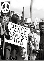 Peoples Park  Student protest & riots in Berkeley California 1969