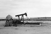 Oljefält i Fide på södra Gotland.