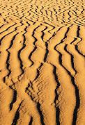 Killpecker Sand Dunes in the Red Desert. Great Divide Basin, Wyoming