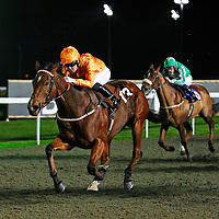 Sonnetation and Pat Cosgrave winning the 5.30 race