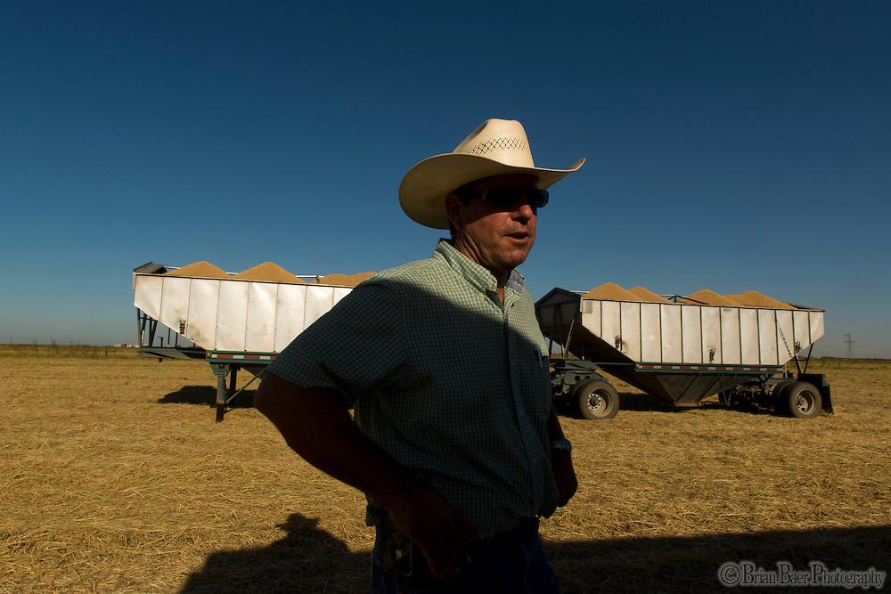 Leo LaGrande on his rice farm in Williams CA, Thursday Sept 19, 2013.<br /> Photo Brian Baer