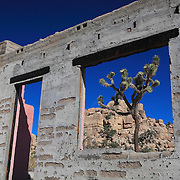 Joshua Tree Old Brick Structure Window View