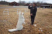 Aipo av rasen hvit gjeterhund er champion på utstilling, men eier Kari krogstad fra Selbu har også lært ham endel triks. Hoinndagan i Selbu. Foto: Bente Haarstad