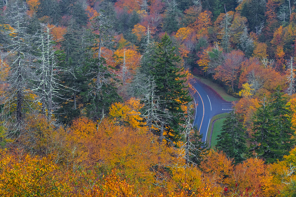 October 11, 2017: The fall colors in peak season from Morton Overlook.