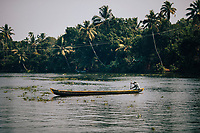 Alleppey, India -- February 20, 2018: A man rows his small canoe on the backwaters of Kerala.