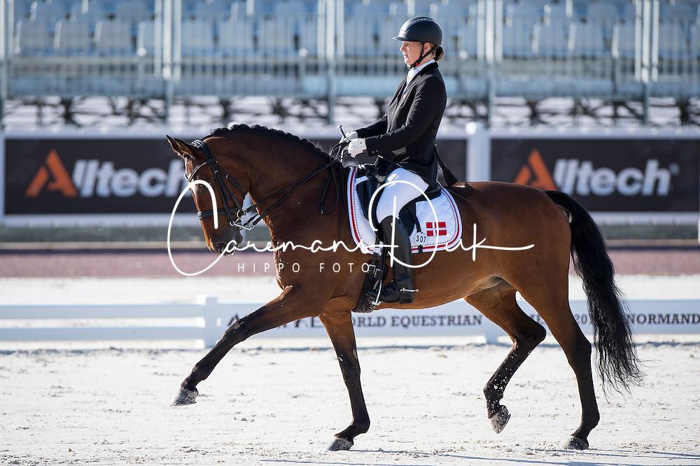 Susanne Jensby Sunesen, (DEN), Thy's Que Faire - Team Competition Grade III Para Dressage - Alltech FEI World Equestrian Games&trade; 2014 - Normandy, France.<br /> &copy; Hippo Foto Team - Jon Stroud <br /> 25/06/14