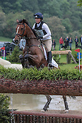 SECOND SUPREME ridden by Pippa Funnell at Bramham International Horse Trials 2016 at  at Bramham Park, Bramham, United Kingdom on 11 June 2016. Photo by Mark P Doherty.