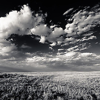 big skies over the wild montana prairie, black and white