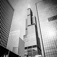 Chicago Willis Tower (Sears Tower) in black and white with downtown city buildings